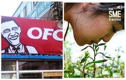 ใครอยากจะรวย มาดูไอเดียธุรกิจแปลกๆในประเทศจีน… แบบนี้ก็มีด้วยหรอ…?