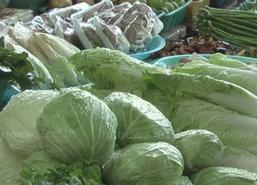 ราคาสินค้าวันนี้ผักสดเปลี่ยนแปลงหลายรายการ