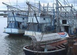 เอกชน จี้ รัฐจัดระเบียบเรือประมงนอกแถว