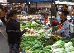 พณ.เผยวันนี้ราคาผักสดปรับขึ้นหลายรายการ