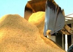 ดัชนีราคาสินค้าเกษตรเดือนตุลาคม57ลดลง