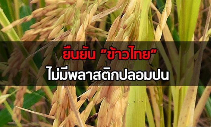 ยืนยันข้าวไทยไม่มีพลาสติกปลอมปน