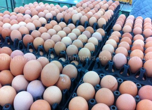 ไข่ไก่ปรับขึ้นอีกฟองละ20สต.-เนื้อหมูคงที่