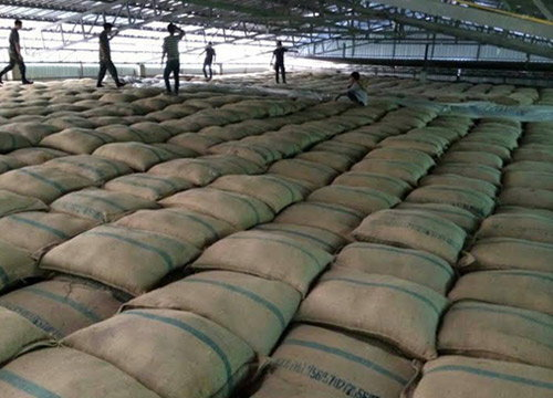 เอกชนคาดปีนี้ไทยส่งออกข้าวได้เกินเป้าหมาย9ล้านตัน