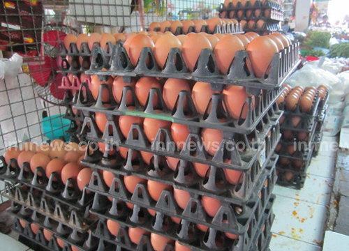 พณ.เผยวันนี้ไข่ไก่ปรับราคาลงฟองละ10สต.