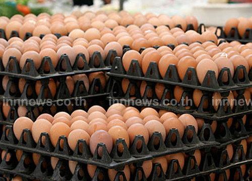 ราคาไข่ไก่สูงขึ้นเล็กน้อยแต่ยังต่ำกว่าปีก่อน
