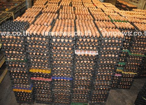 วันนี้เนื้อหมูราคาลง-ไข่ไก่เพิ่มฟองละ10สต.