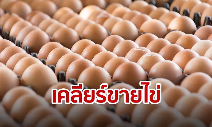 เคลียร์เรื่องไข่! จะขายทั้งทีต้องมีใบอนุญาตเฉพาะผู้ค้ารายใหญ่