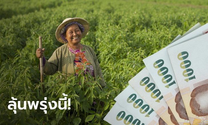 คลังจ่อเสนอมาตรการเยียวยาเกษตรกรเข้าที่ประชุม ครม. พรุ่งนี้
