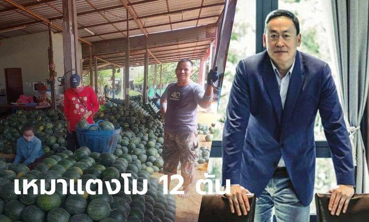 บิ๊กแสนสิริ เหมาแตงโม 12,000 กิโลกรัม ช่วยเกษตรกร นำไปแจกชุมชนเดือดร้อนจากโควิด-19