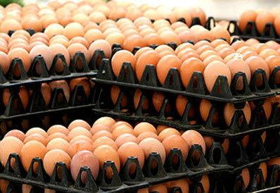 มาแล้ว! รถเร่ขายไข่ไก่ แบบถูกสุดๆ
