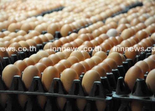 แม่ค้าบางเขนเชื่อกินเจราคาไข่ปรับลง