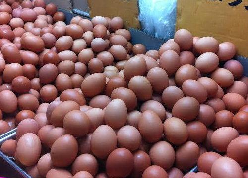 พณ.เผยวันนี้ไข่ไก่ขยับอีกฟองละ10สต.