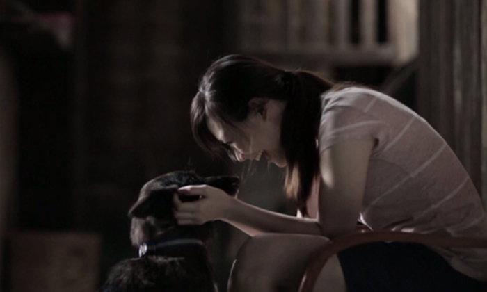 คลิปสุดซึ้ง! ที่คนไม่เคยเลี้ยงสุนัข ยังอาจต้องหลั่งน้ำตาให้