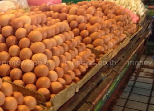 พณ.เผยวันนี้ราคาไข่ไก่ปรับขึ้น10ส.ต.
