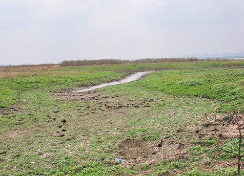 ก.เกษตรฯทำฝนหลวงนครราชสีมา