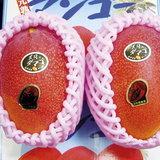 ผลไม้5---