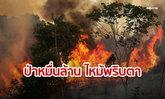 ป่าแอมะซอนรับเงินต่างชาติอื้อหวังฟื้นสภาพ แต่ราบคาบในกองเพลิง!