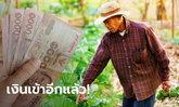 www.เยียวยาเกษตรกร.com เช็กเงินเข้า ธ.ก.ส. โอน 5,000 บาท อีก 1 ล้านรายวันนี้