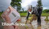 เยียวยาเกษตรกร จ่ายให้ 8 แสนคน ไม่ทัน 31 พ.ค. นี้ ธ.ก.ส. เริ่งโอนให้ต้นเดือน มิ.ย. 63