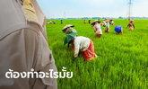 ตรวจสอบเงินเยียวยาเกษตรกร ข้าราชการ 91,000 คน ต้องทำเรื่องขอหักเงินคืนมั้ย?