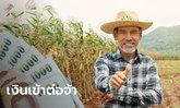 เช้านี้เช็กสิทธิ์เยียวยาเกษตรกร รับ 5,000 บาท ด้วย ธ.ก.ส. โอนให้อีกแล้ว
