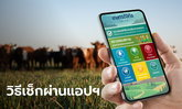 """เช็กสิทธิ์เยียวยาเกษตรกร ผ่านช่องทางแอปพลิเคชั่น """"เกษตรดิจิทัล"""" แค่กด 3 ที"""