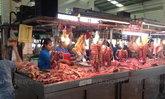 สศก.ชี้ต้นทุนผลิตหมูสูงต่อจากค่าอาหารสัตว์
