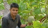 หนุ่มหัวใส ใช้ที่สวนยางของชาวบ้าน ปลูกพืชระยะสั้นหลากชนิด ทำรายได้ปีละ 5 ล้าน