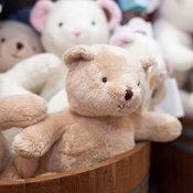 Teddy House1