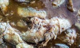 คลอดแล้ว! สูตรปลาร้ามาตรฐาน-อธิบายส่วนประกอบละเอียดยิบ