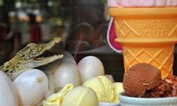 """เมนูพึลึก """"ไอศกรีมไข่จระเข้"""" บูมในฟิลิปปินส์"""