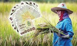 ธ.ก.ส.เร่งเดินหน้าแก้หนี้เกษตรกร เยียวยาลูกค้ากว่า 8 แสนราย วงเงิน 116,000 ล้านบาท
