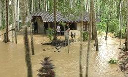 น้ำท่วมภาคใต้ยางพาราเสียหาย 1 ล้านตัน