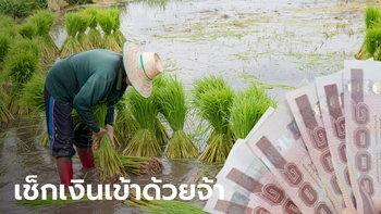 ตรวจสอบสิทธิ์เยียวยาเกษตรกร 8.2 แสนราย เร่งโอนเงินเข้าอีกวันนี้