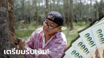 เงินประกันรายได้ยางพาราจ่อเข้าบัญชีชาวสวนยางภายในสัปดาห์หน้า