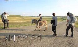 เมื่อดาราเกาหลีต้องเที่ยวต่างแดนแบบถังแตก ใน Wizard of Nowhere