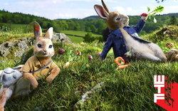 รีวิว Peter Rabbit กระต่ายปีเตอร์สุดฮากับความคลาสสิกเหนือกาลเวลา