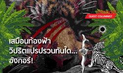 """""""อังกอร์"""" ป่ามนต์ดำ คอมมิวนิสต์เขมรแดง ผ่านแฟนตาซีละครไทย"""