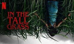 รีวิว In The Tall Grass เดินหลงในพงหญ้า