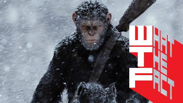 บ็อกซ์ ออฟฟิศ ต่างประเทศ(14-16 ก.ค.17) War for the Planet of the Apes ผงาดเหนือ Spider-Man