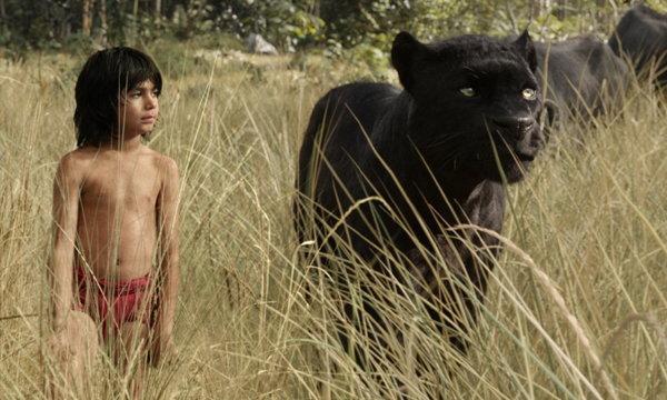 """วิจารณ์หนัง The Jungle Book การปัดฝุ่น """"ดอกไม้สีแดง"""""""