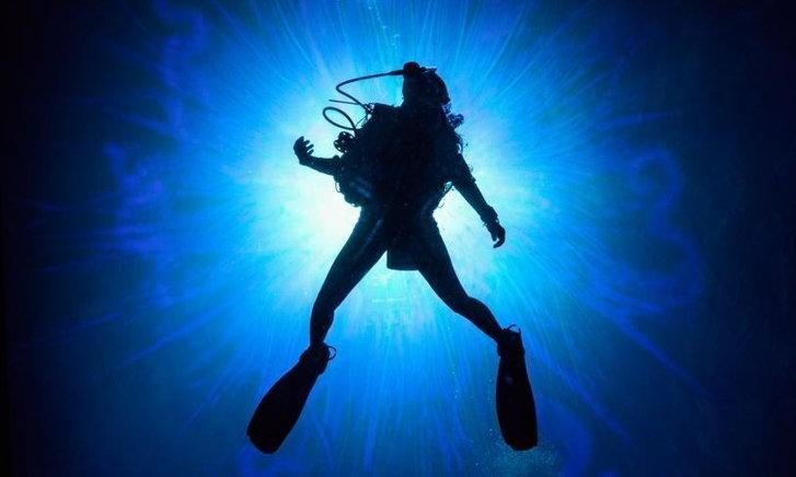 Sea Fever หนังระบาดวิทยาเรื่องใหม่ ภายใต้คราบสัตว์ประหลาดใต้ทะเล
