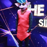 the mask singer