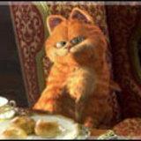 วิจารณ์หนัง GARFIELD: A TAIL OF TWO KITTIES