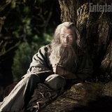 ภาพแรก The Hobbit กำเนิดของอภินิหารแหวนครองพิภพ