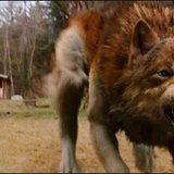 Twilight Saga : Eclipse เริ่มเปิดกล้องสิงหาคมนี้