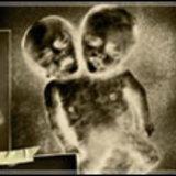2 ผู้กำกับ โต้ง -โอ๋ ปิ๊งข่าวดังแฝดสยามเงหาข้อมูลแฝดทั่วโลก ทำหนังแฝด
