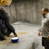 หนัง Zookeeper