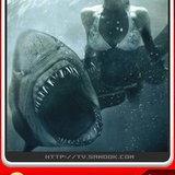 หนัง Shark Night 3D